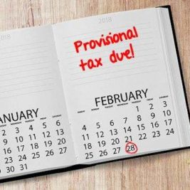 Provisional taxpayer